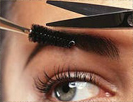 Los Angeles Eyebrow Shaping Tinting Eyelash Brentwood