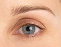 Permanent Makeup - Eyebrow Before